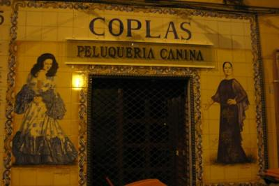 20081109212440-copla-opti.jpg
